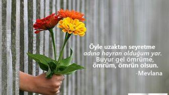 Aşk Lafları, Kısa Aşk Sözleri, Aşk Mesajları