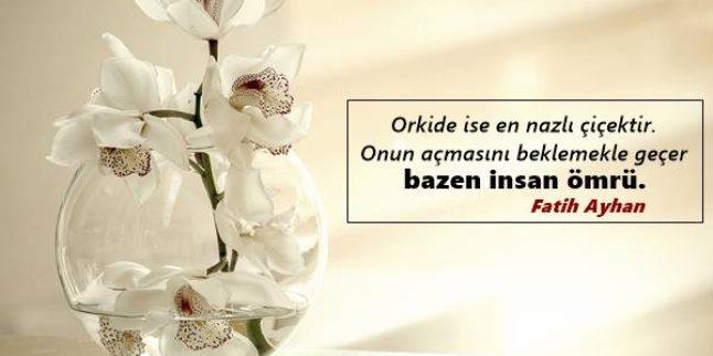 Orkide İle İlgili Sözler – Çok İyi Sözler
